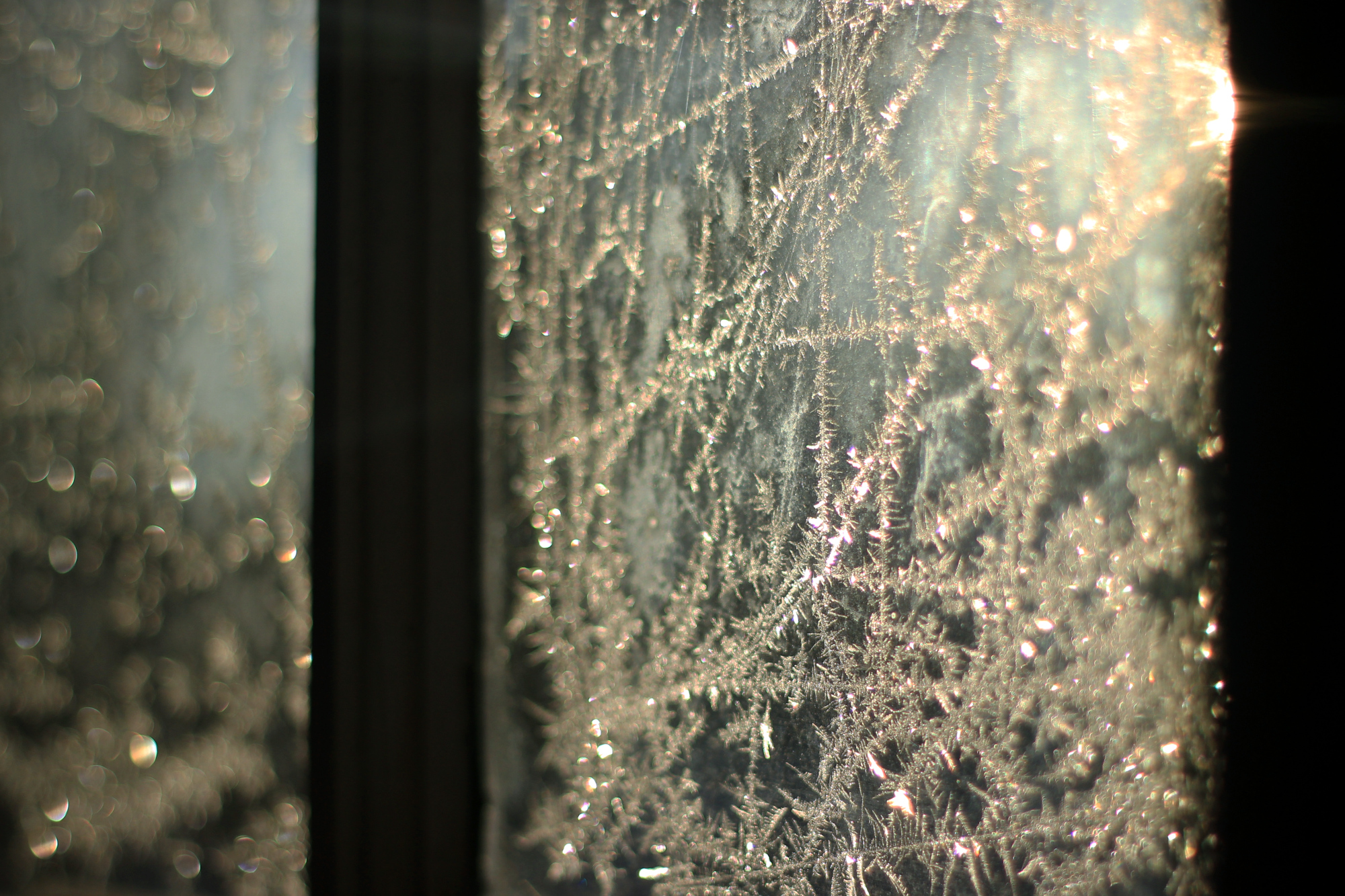 Frost on the windows