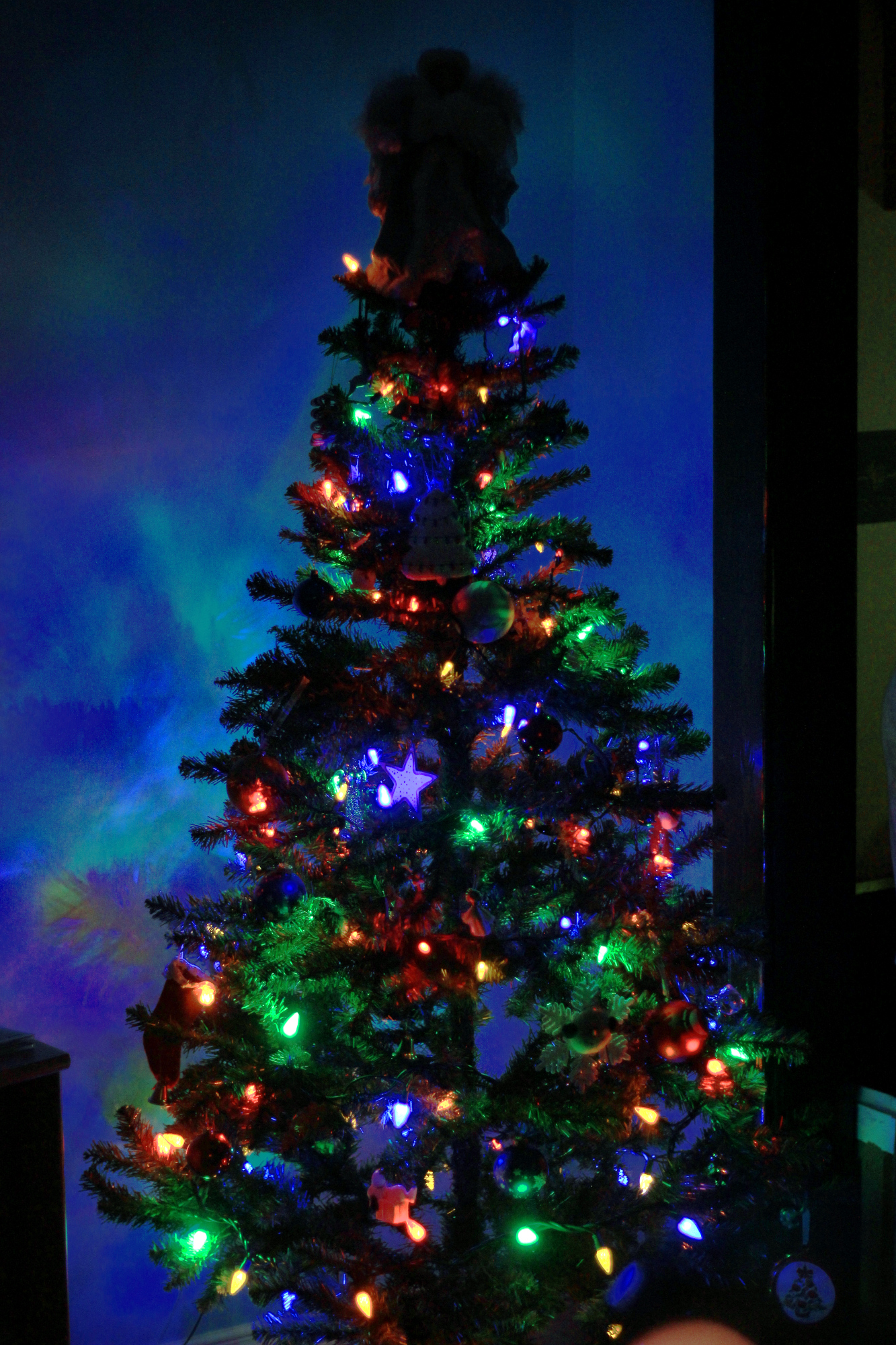 Our Christmas tree, all lit up