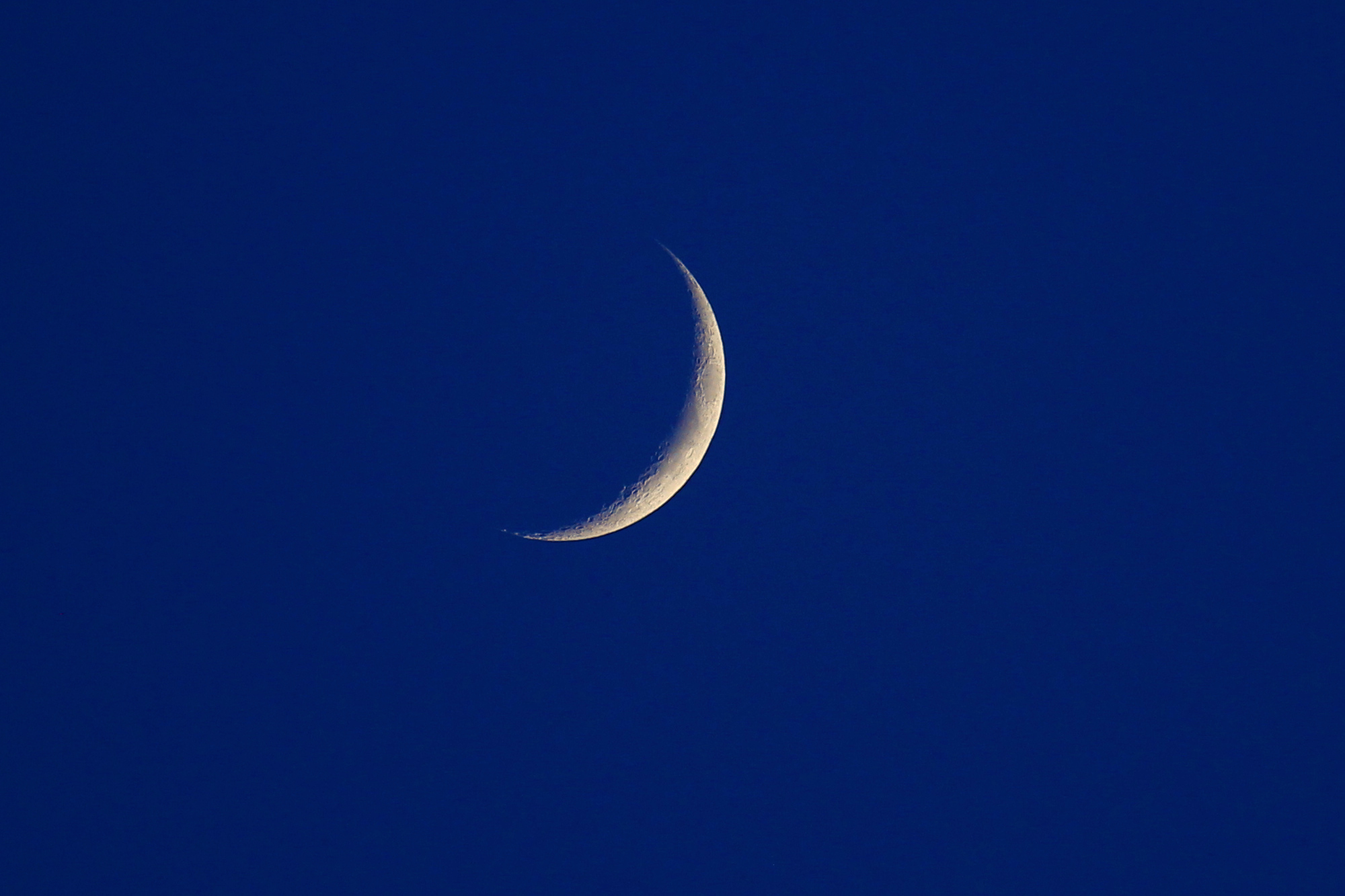 Crescent moon on sunset blue sky