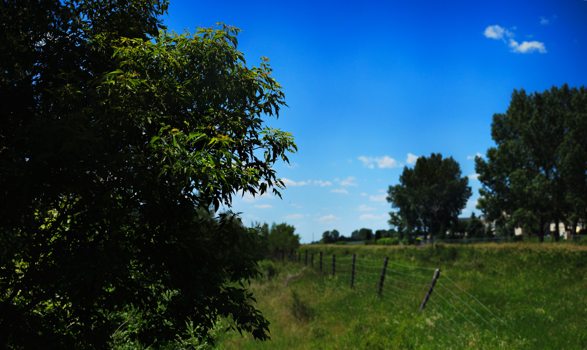 Panorama of the sky and a broken-down fence
